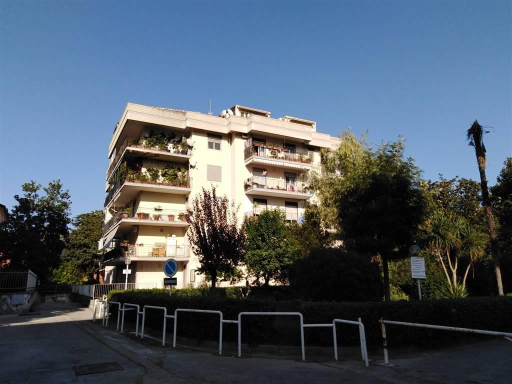 Vendesi Viale Carlo III Appartamento In Parco di Ampia Metratura